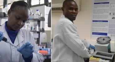 SCREENING OF DNA TRANSCRIPTOME